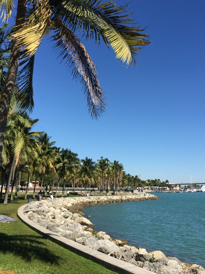 Bayfront Park. Foto: Enjoy Miami